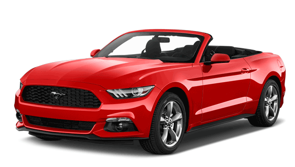 Ford Mustang Rental >> Ford Mustang For Rent